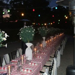 Parties / Weddings